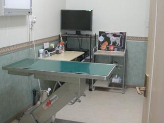 そが動物病院photo