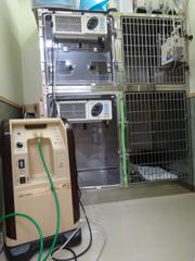 ICU及び隔離室